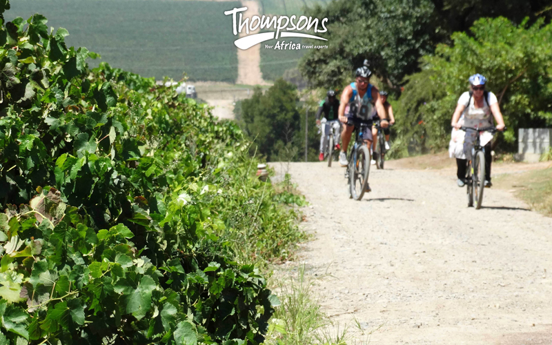 Explore with Us…On Two Wheels