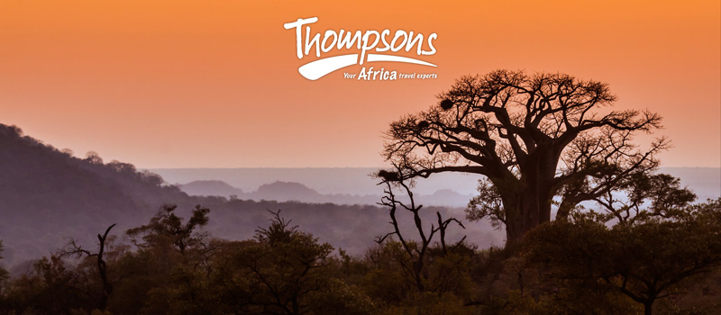 Confirm consent to receive updates from Thompsons Africa - 24 May 2018