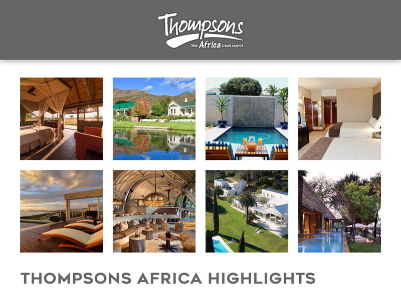 Thompsons Africa Highlights - 10 August 2018