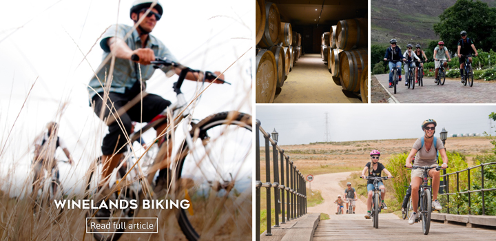 winelands biking