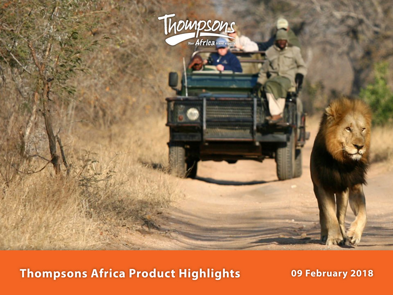 Thompsons Africa Product Highlights - 12 February 2018