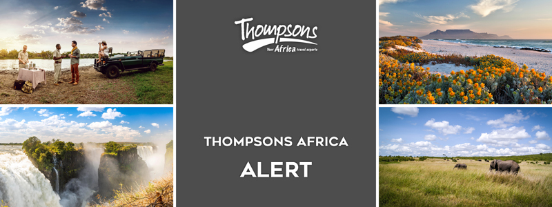 Thompsons Africa Alert Header