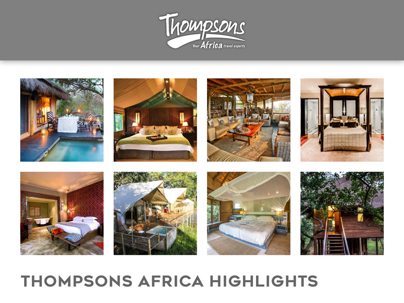 Thompsons Africa Highlights - 29 June 2018