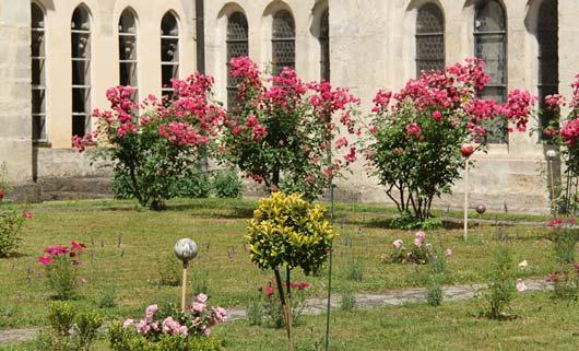 Klostergarten Blumen und Sträucher Kremsmünster