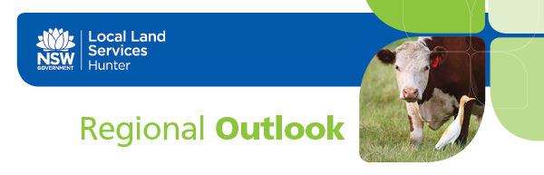 Hunter Local Land Services Regional Outlook