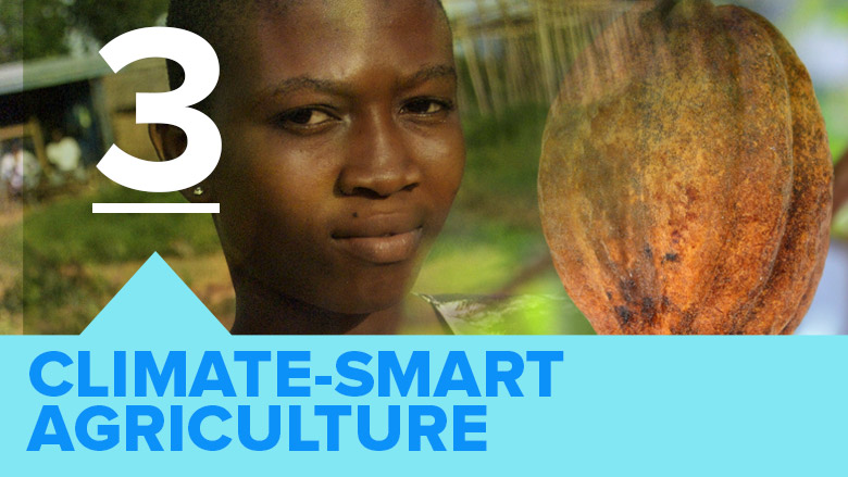 Climate Smart Agriculture by World Bank