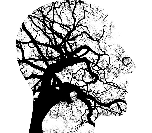 Profile with tree graphic inside