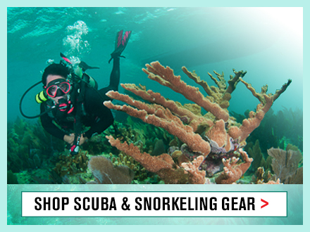 Scuba & Snorkel Gear for Dads and Grads