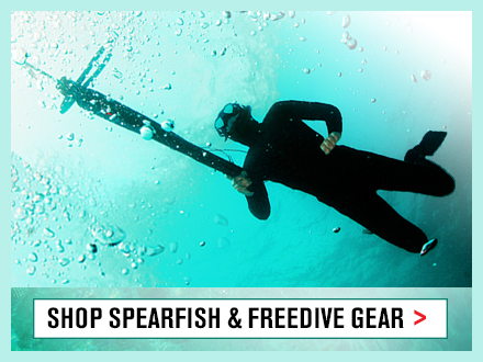 Spearfish & Freedive Gifts