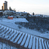 The beautiful hills of Piedmont offer some of the most fascinating wines in the world