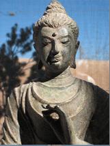 AVS Buddha