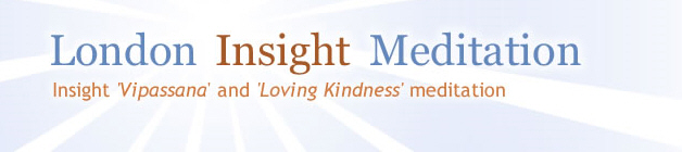 London Insight logo