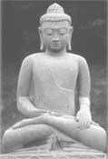 SFI Buddha
