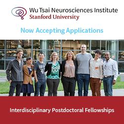Interdisciplinary Scholar Awards