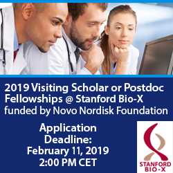Novo visiting scholars ad