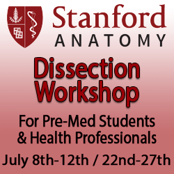 Stanford Clinical Anatomy Summer Dissection