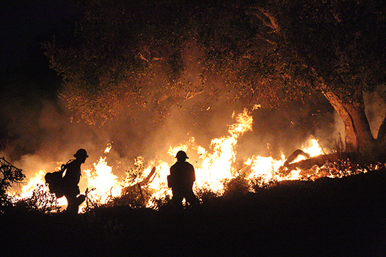 Getty image of fire fighters battling a wildfire