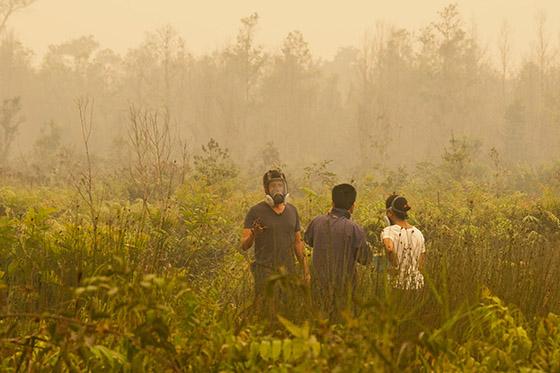 Peatland fire in Southeast Asia