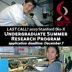 Bio-X undergrad program ad