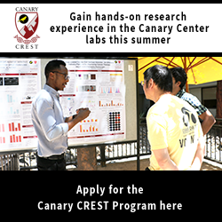 CREST Summer Internship Program