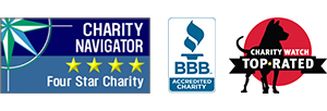 Better Business Bureau, Independent Charities of America Best Award, Charity Navigator 4 Stars logos