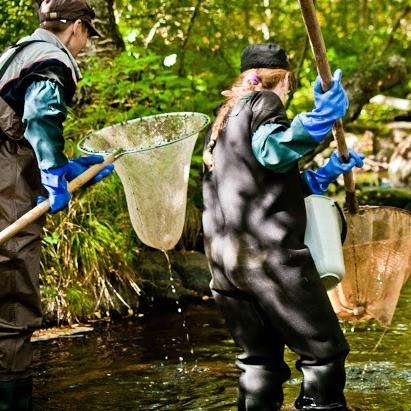 We fund river restoration projects