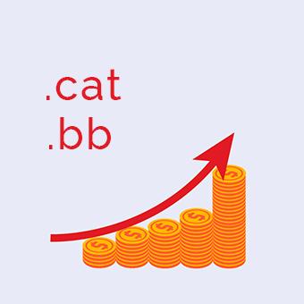 dominios .cat y .bb