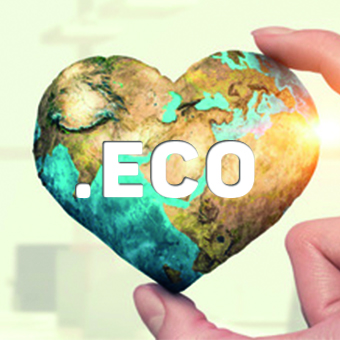 .eco domain extension