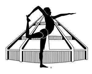 IYENGAR® yoga - visita il sito Iyengaryoga.it