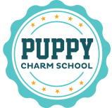 puppy school, puppy, puppy socialization, puppy class, Frederick, dog training, puppy training, clicker, positive