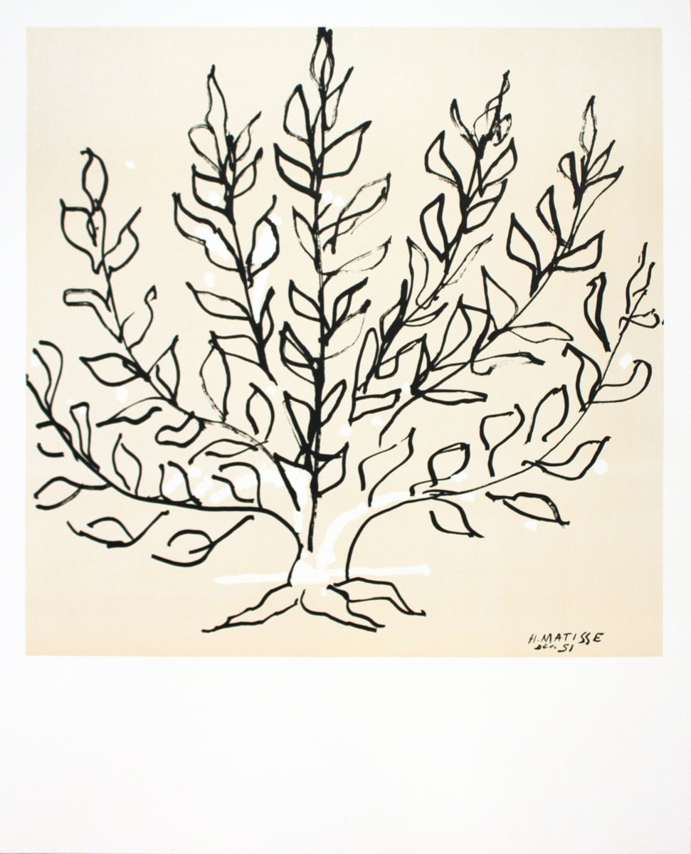 matisse le buisson bushes drawing poster