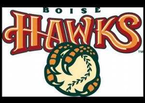 Boise Hawks Night