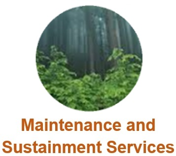 WSA Maintenance and Sustainment Services Icon