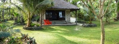 Sanddollar - Vanuatu