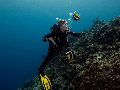 diving with Devils Point Dive