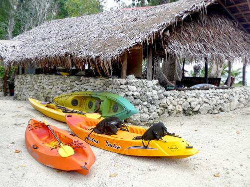 kayaks at Sanddollar