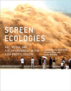 Screen Ecologies