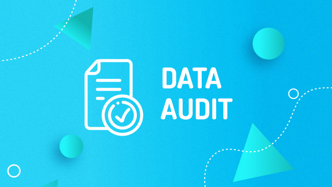 Mailchimp data audit