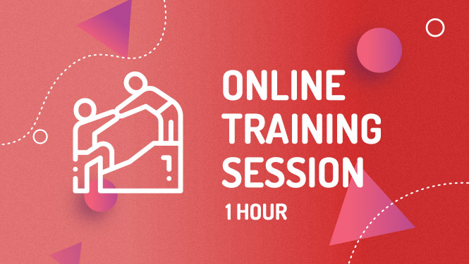 Mailchimp online training session