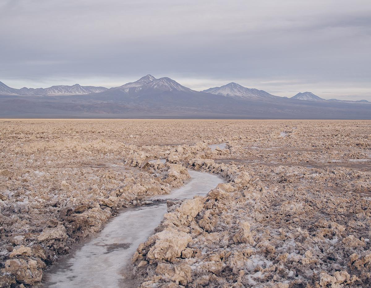 RAD AND HUNGRY: Flamingo Reserve, San Pedro Atacama 1