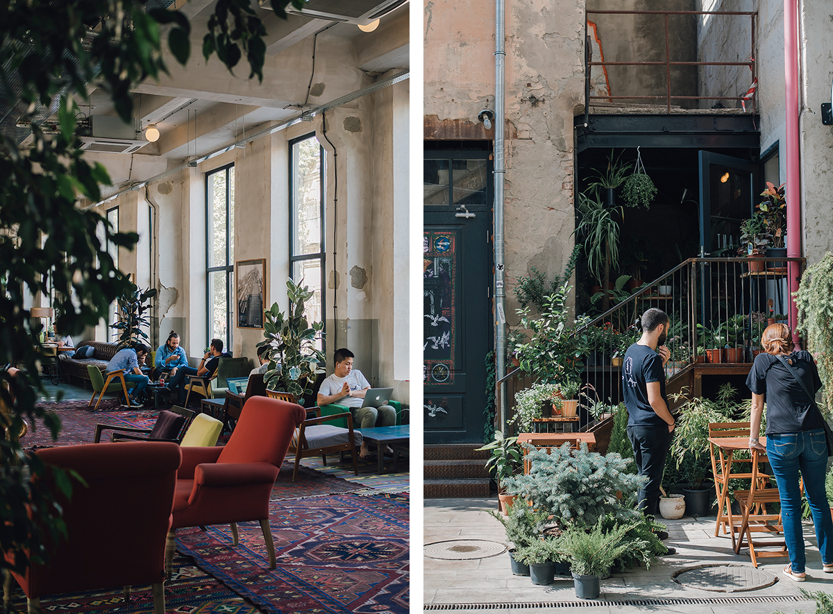 RAD AND HUNGRY: Fabrika Hostel & Plant Shop