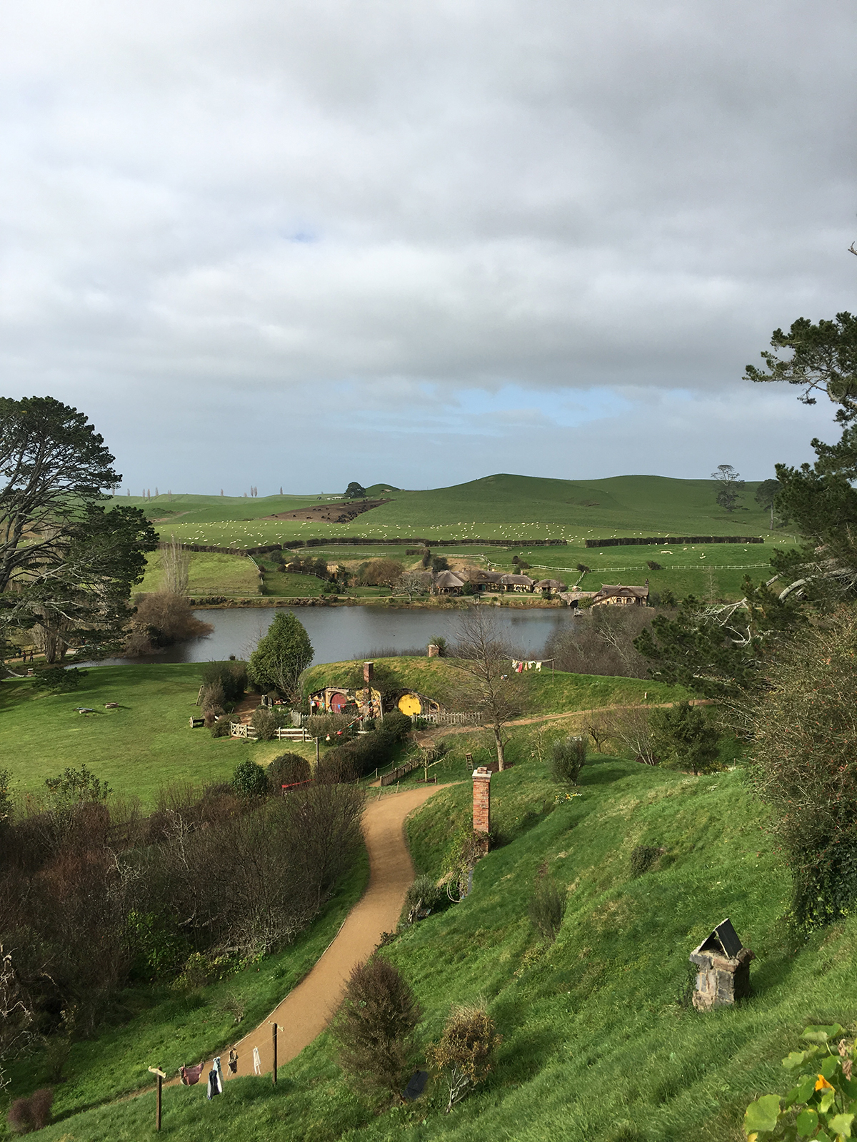 RAD AND HUNGRY: Hobbiton