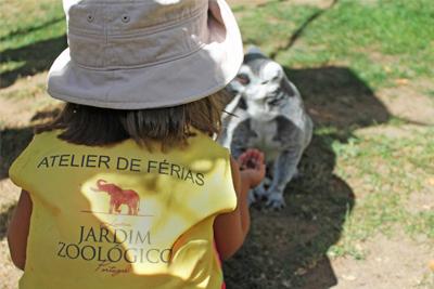 Natal no Jardim Zoológico de Lisboa