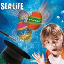 Sealife Páscoa