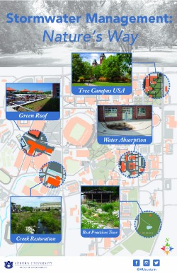 Stormwater Management poster