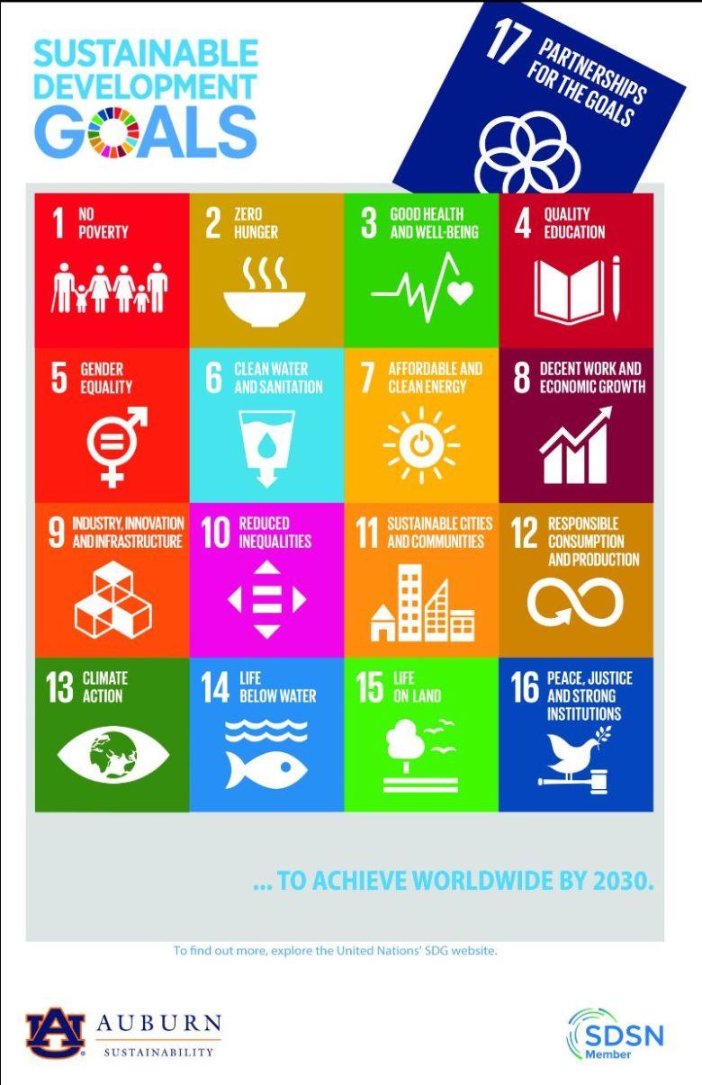 Sustainable Development Goals Poster