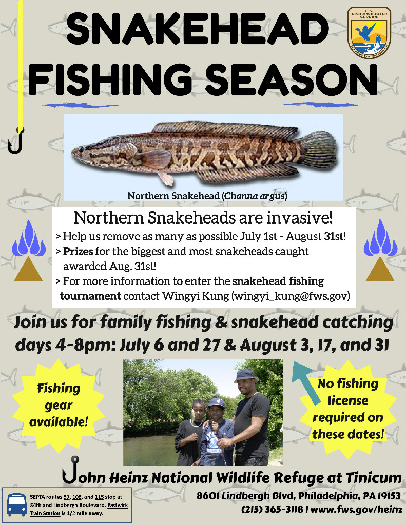 Snakehead Fishing flyer