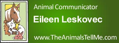 Eileen Leskovec - www.TheAnimalsTellMe.com