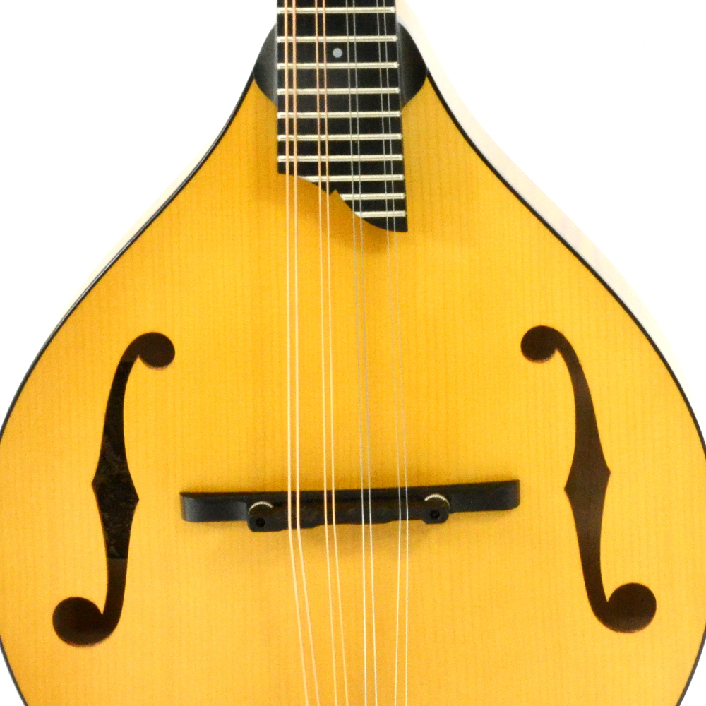 Collings MT Honey Amber Mandolin