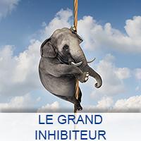 LE GRAND INHIBITEUR